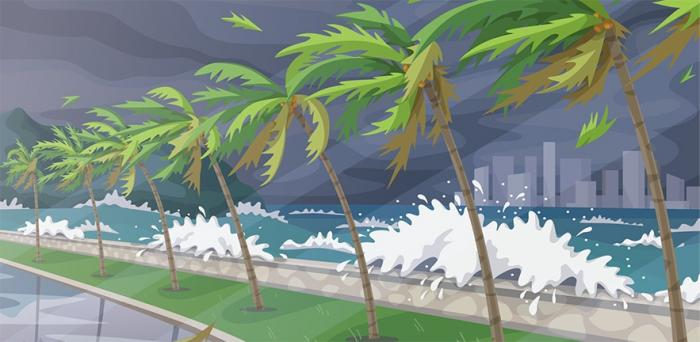 illustration of a hurricane hitting a shore and bending palm trees