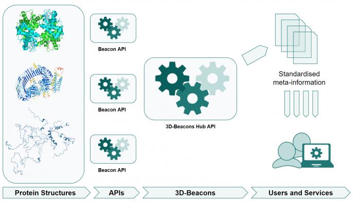 3D Beacons APIs