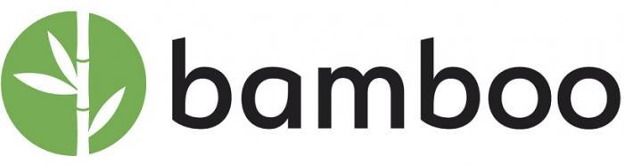Bamboo Systems logo