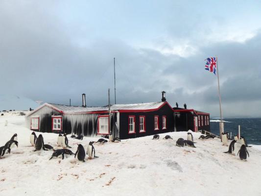 Base A, Port Lockroy UKAHT Credit: UK Antarctic Heritage Trust