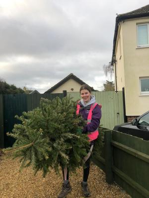 Christmas tree collection to raise money for EACH