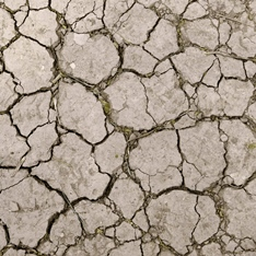 parched earth_drought