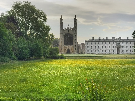 King's Meadow, Cambridge