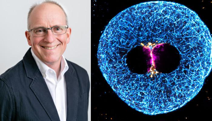 Martyn Blayney and super-resolution immunofluorescence image of 3 PN human zygote