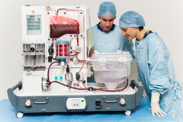 The Organox liver perfusion machine