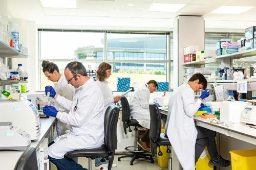 Petmedix laboratory and workersin lab gear