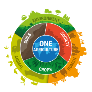 One Agriculture REAP 2019