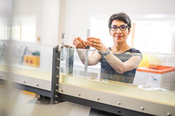 Dr Maryam Imani