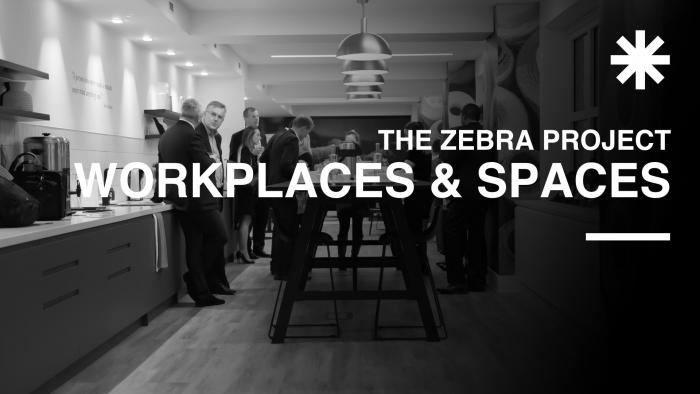 The Zebra Porject graphic_showing people in workspaces