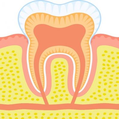 illustration of a tooth