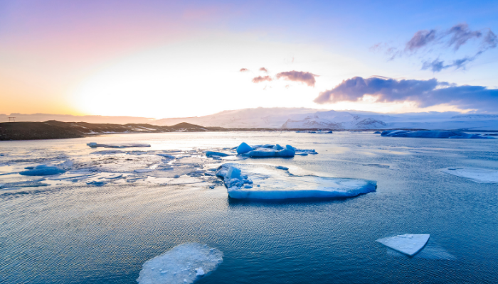 The World Continued to Warm in 2020