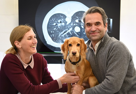 Copper the dog with VetCT Co-Directors, Victoria Johnson and Julien Labruyère.