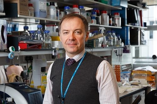 Professor Stefan Marciniak