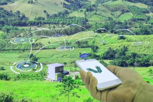 IoT soil moisture sensors in the field