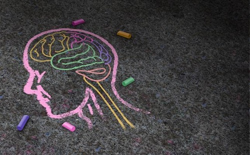 chalk drawing of a head with brain highlighted