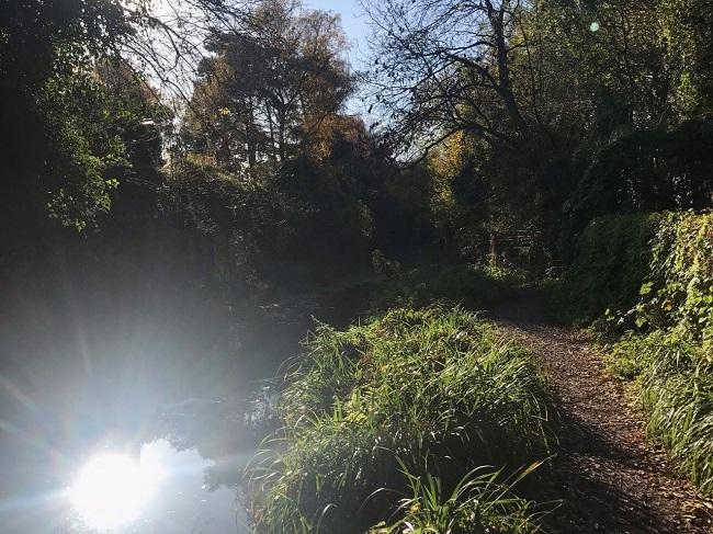 John's arty countryside shot