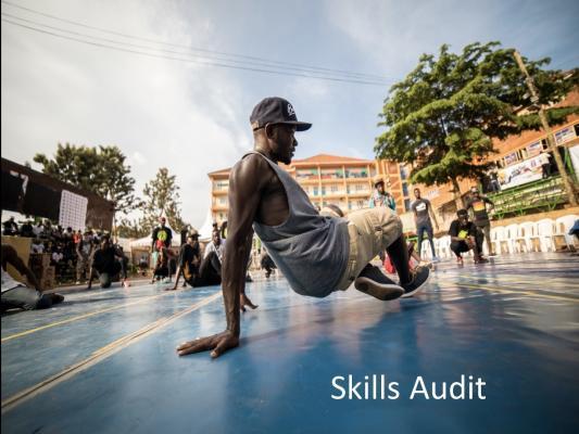 breakdancer_ skills audit