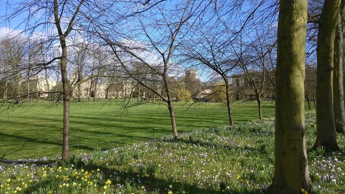 Cambridge scene in spring