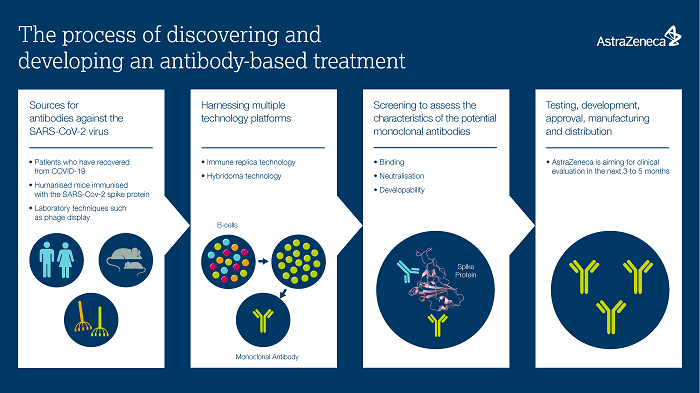 The process of discovering an antibody-based treatment_infographic
