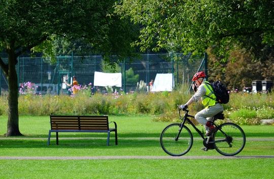 Cyclist crossing Jesus Green in Cambridge