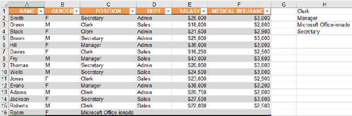 Roem image_Excel table