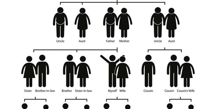genetics graphic