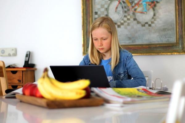 girl on home laptop_Image by Markus Trier from Pixabay