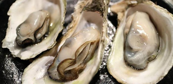 Oysters  Credit: Image by Yung-pin Pao from Pixabay