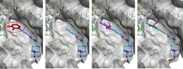 The new docking feature enables Spark users to find fragments picking ligand-protein interactions directly from the protein active site.