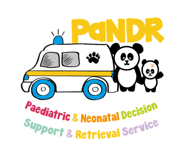 Paediatric and Neonatal Decision and Support Retrieval service (PaNDR) logo