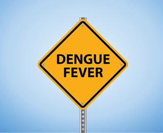 dengue endemic vaccines