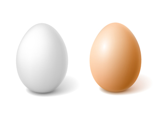 a white egg and a brown egg