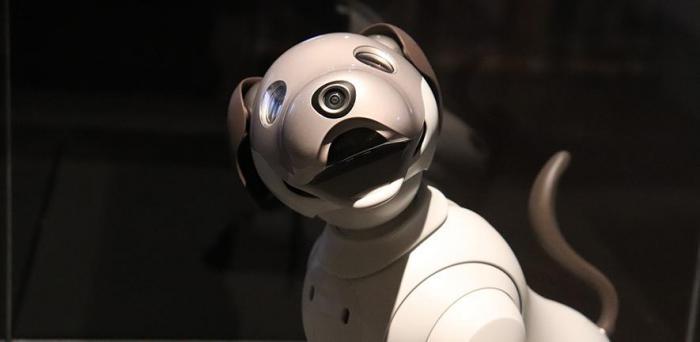Robot dog  Credit: GAIMARD