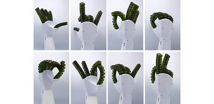 Robotic hand made of self-healing material that can heal at room temperature  Credit: Bram Vanderborght