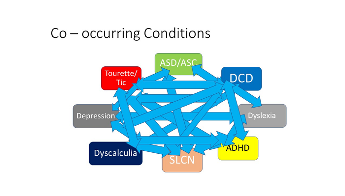 Co-occurring conditions graphic